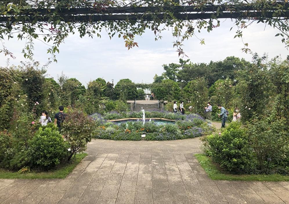 秋の『港の見える丘公園』で横浜港とローズガーデンを楽しむ