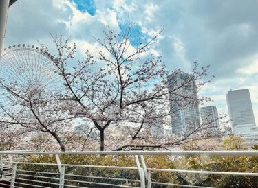 横浜ベイホテル東急『ソマーハウス』のデリランチと春スイーツ